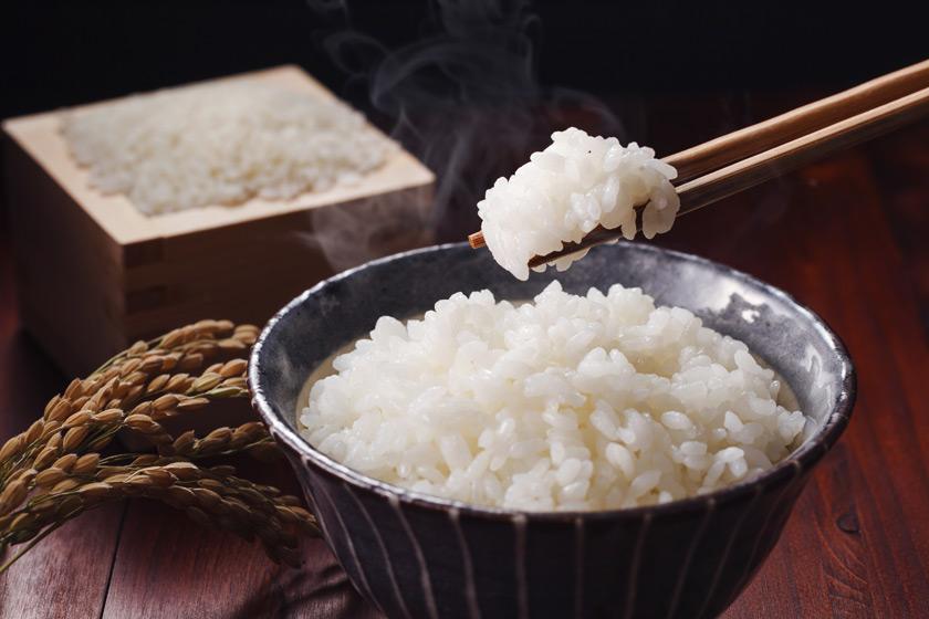 Ekmek Yerine Pirinç